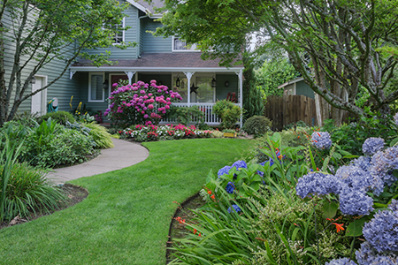 Best Tips For SPRING Yard Prep